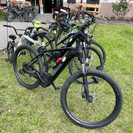 Und nun haben wir 2 Trailer-Bikes in der Vermietung